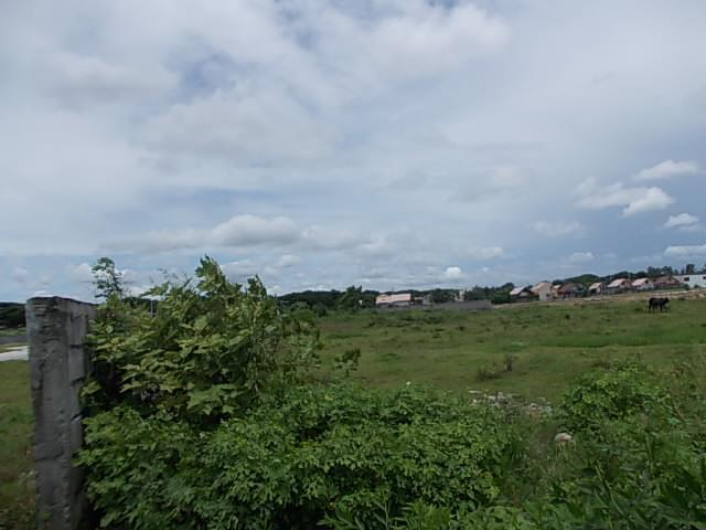 Balubad, Silang Cavite Lot near Acienda Oulet 2.1 Hectares P4,600/sqm