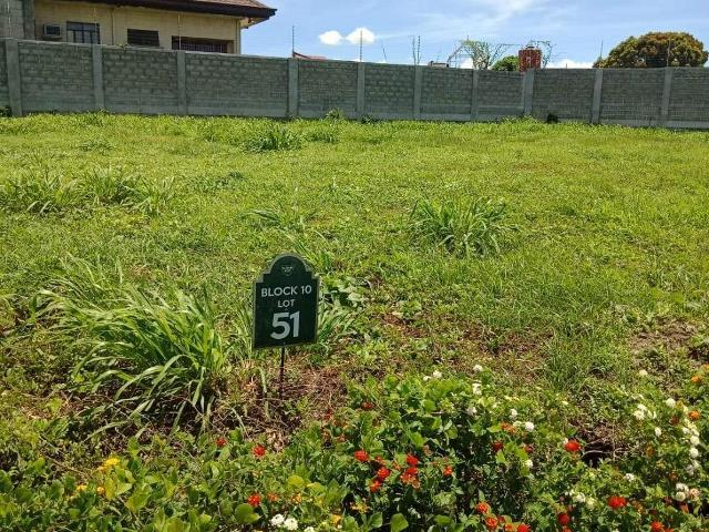 319 Sqm Prime Residential Lot Property for sale in Alabang West by Meg