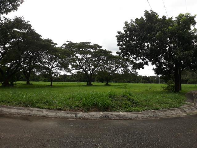 462 Sqm High End Residential Lot for sale in Manila Southwoods Estates