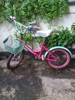 Sepeda anak perempuan United