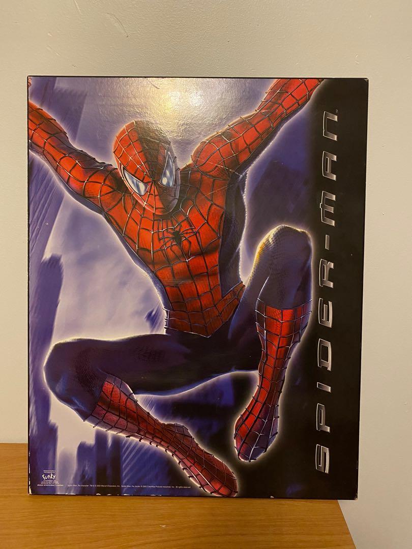 Spider-Man Frame