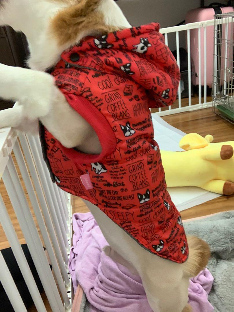 狗頭寵物防風外套衣服