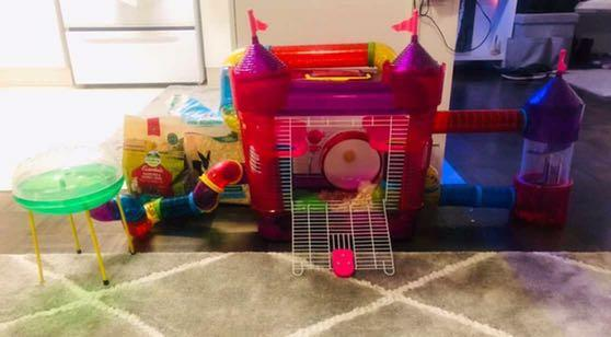 Hamster cage with water bottle, spinning wheel, hide house, food bowl, pet bedding and hamster food