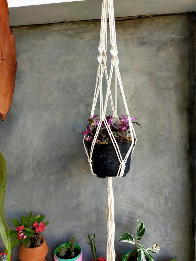 Pot Gantung Macrame