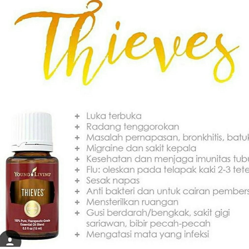 Thieves young living oil