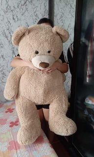 Super Big teddy bear