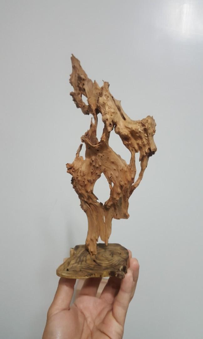 台灣 香杉 小樹瘤 自然 風化 擺飾 裝飾(2)