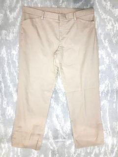 Uniqlo Smart Ankle Trouser