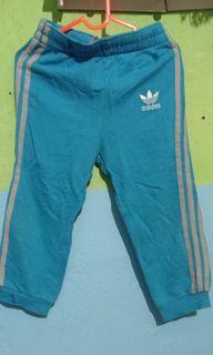 Celana training Adidas Ori
