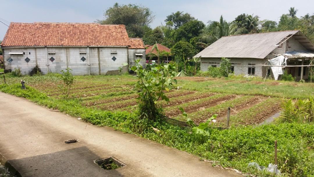 Tanah Kampung harga Murah