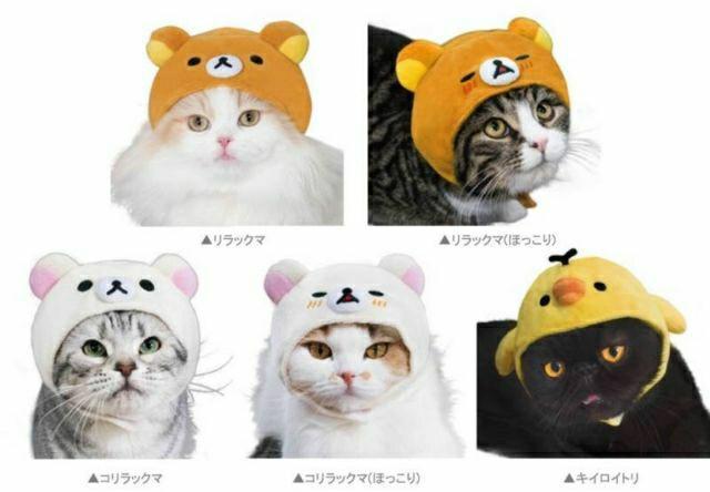 日本盒玩 拉拉熊貓咪頭套 有五款隨機,每種都很Q。貓奴必備,主子最可愛。