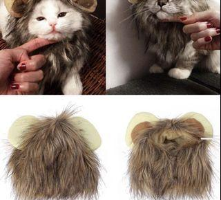 Lion Hair for pets
