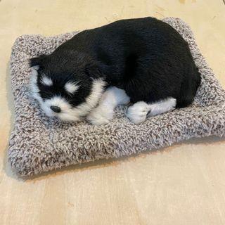 趴睡造型除臭仿真小狗、零錢包*2、贈品
