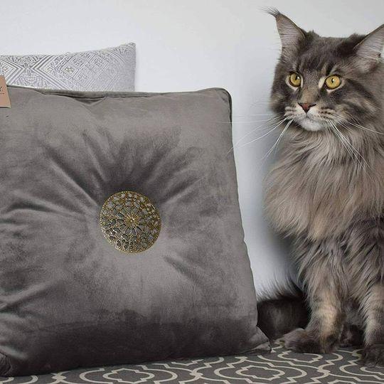 [NEW] Premium Velvet Throw Pillow Bombay Brand