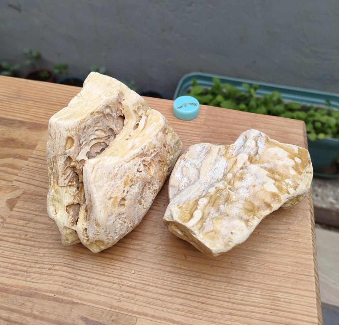 老珍藏香琥珀原礦~天然木紋乳香珀原礦~供佛的聖品~燃燒香味十足~維持居家祥和的磁場