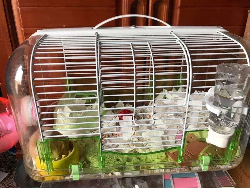 倉鼠籠(限自取