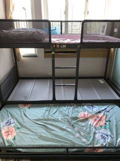 兩層碌架床及子母床 連同兩床褥