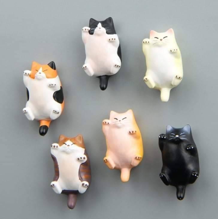 【預購】肥貓立體磁鐵 冰箱貼 貓咪 預購 滿300元贈品 隨機出貨