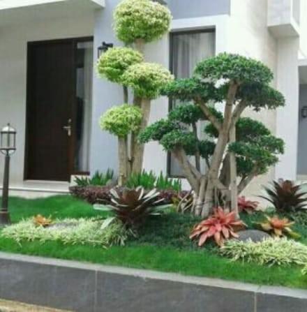 Jasa pembuatan taman hijau dekorasi percantik tampilan baru