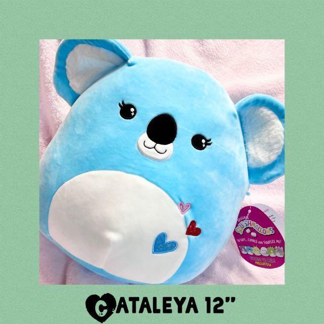 "Cataleya Squishmallows Koala 12"" Plush 2021 Valentine's Day"