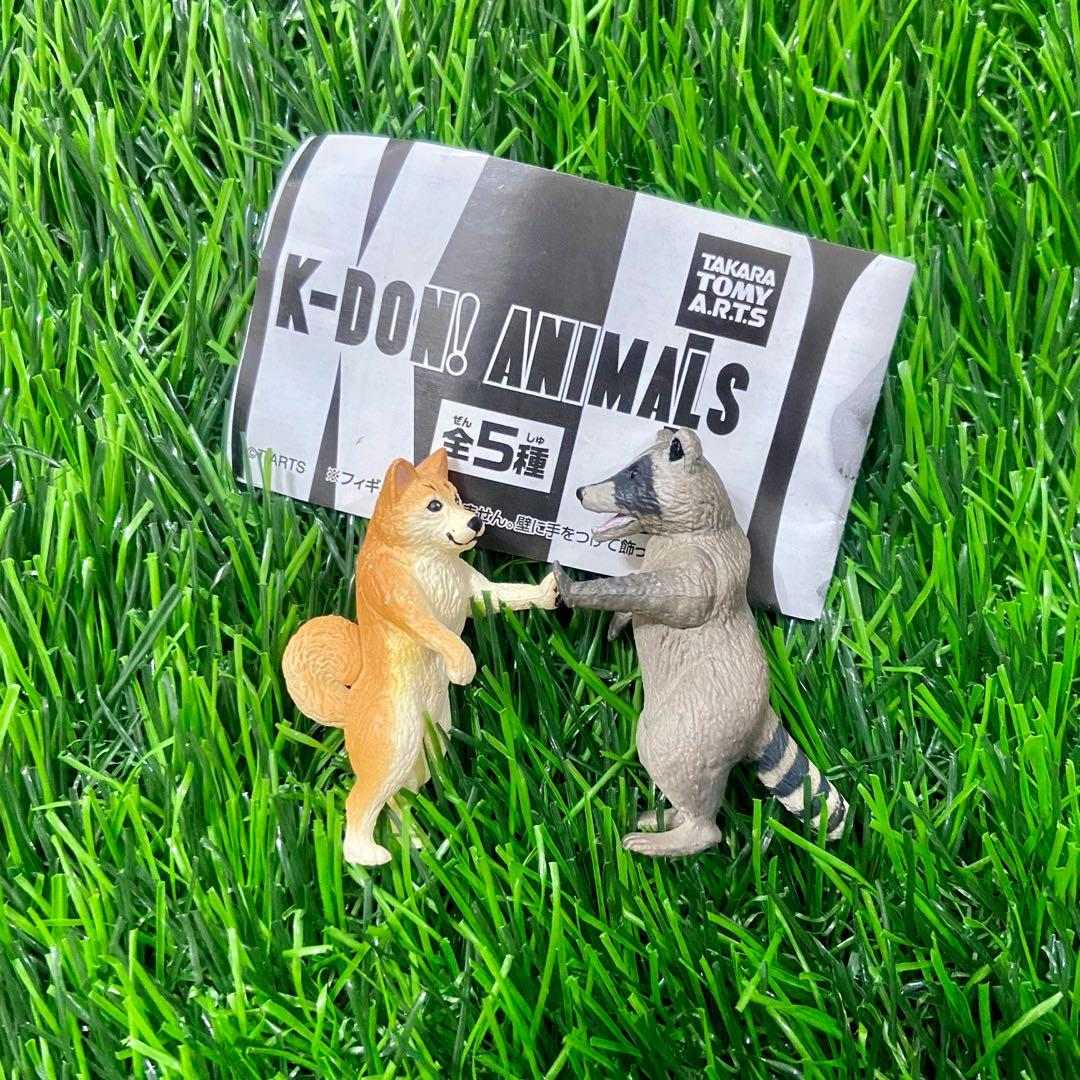 T-ARTS 壁咚 動物 K-DON! ANIMALS 扭蛋公仔 柴犬款 浣熊款