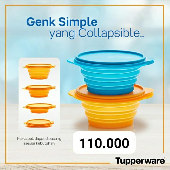 Tupperware Go Flex