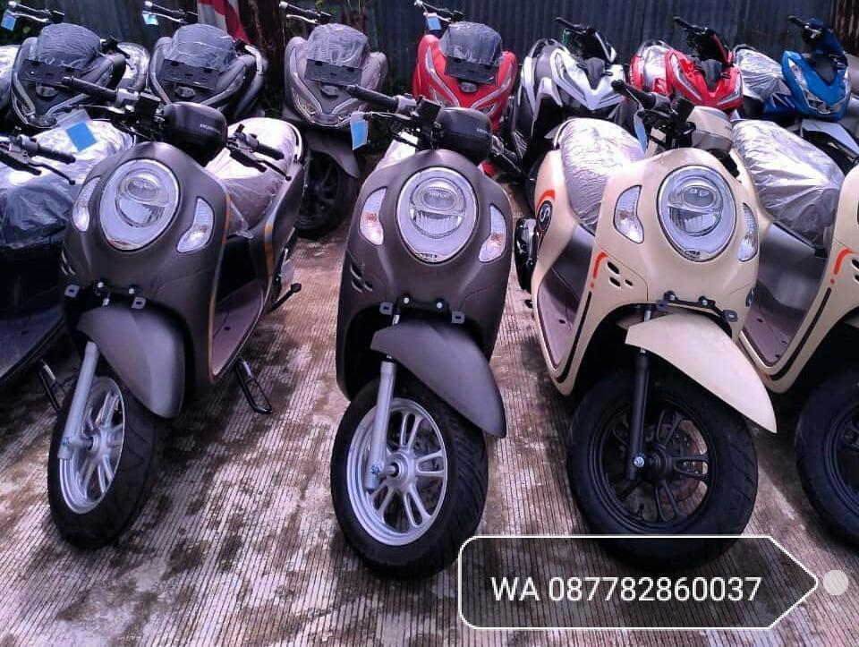 Honda Scoopy 110 cc [ Promo Kredit ]