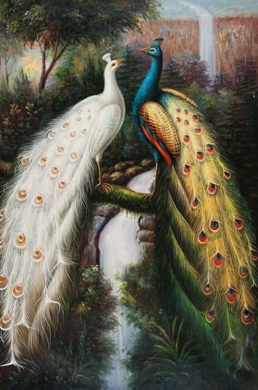 lukisan kanvas burung merak 150x90 cm