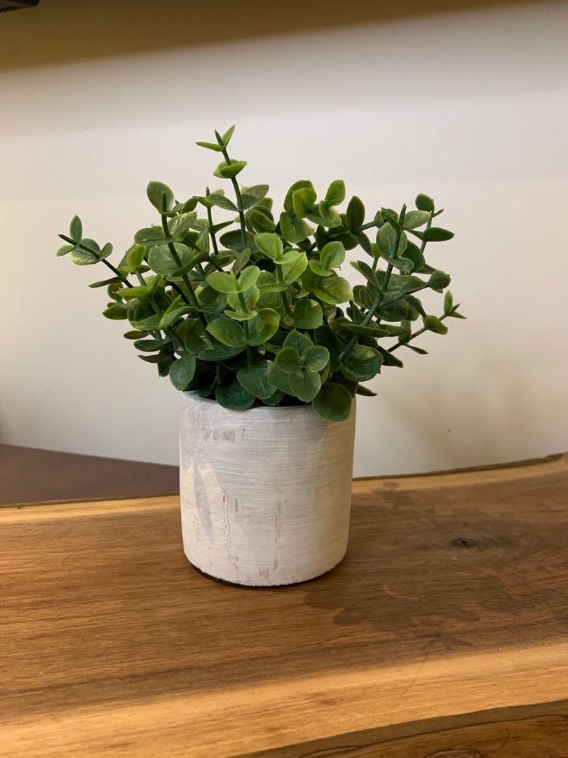 Beautiful Artificial Plant with Ceramic Pot