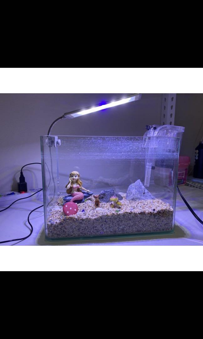 二手魚缸(含飾品、檯燈、濾水器)