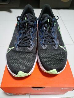 Nike Winflo 7
