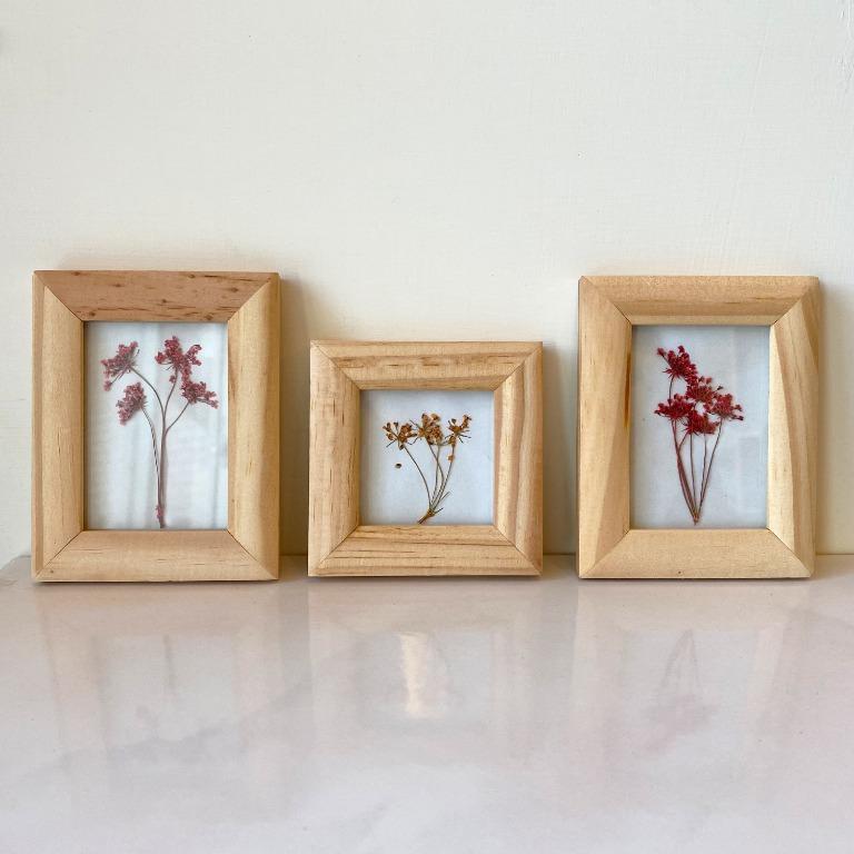 手工乾燥花 三色蕾絲花 小相框三入一組 掛牆式 植物相框