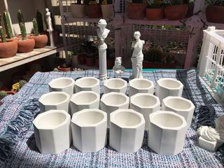 Cactus / Succulent Pots Octagon shape