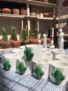 Cactus / Succulent Pots with cute designOctagon shape