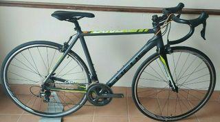 New Focus Cayo Bike