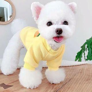 狗狗衣服《S號》1.5-2.5kg.只剩一件售完為止
