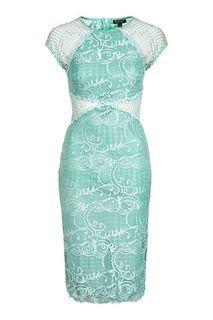 Fishnet Lace Bodycon Midi Dress (Topshop)