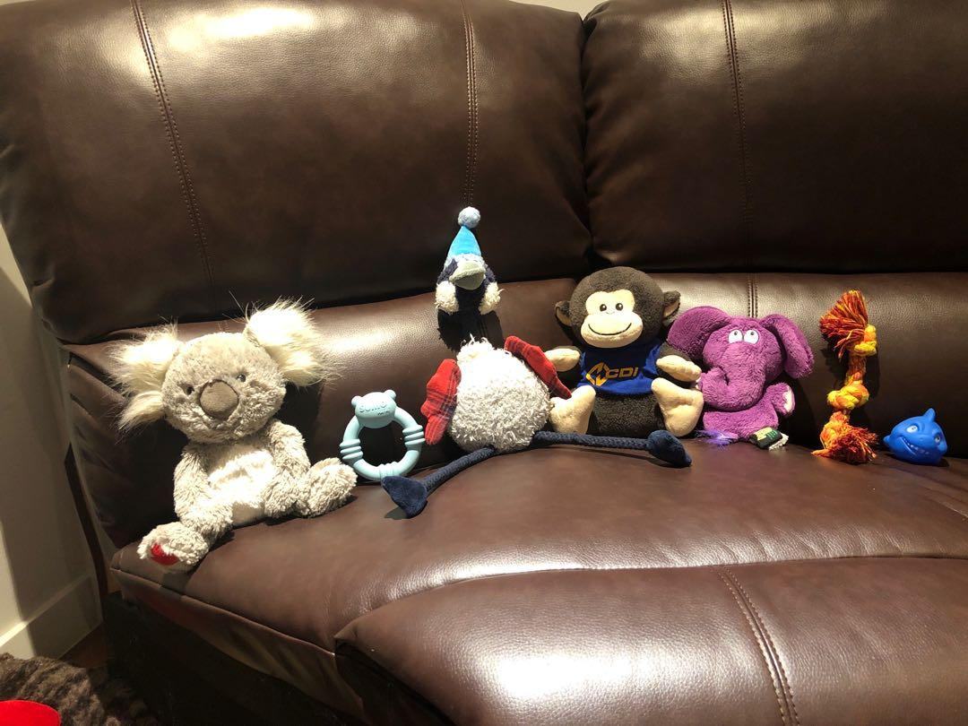 Dog toys for xs or small dog