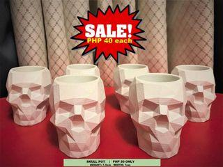 Skull Head Pots for Cactus & Succulent