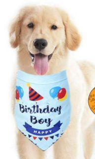 Happy Birthday Dog Puppy Pet Bandana Scarf Celebration