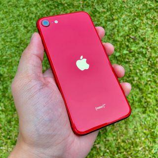 iPhone SE 2020 64 GB iBox Resmi