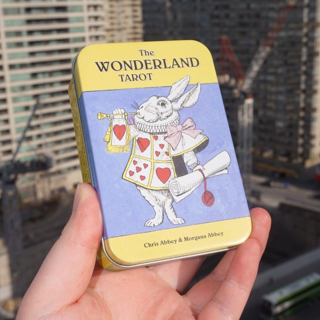 EUC🌿 The Wonderland Tarot in a Tin