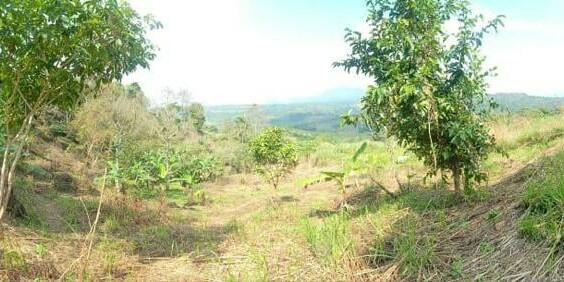 Tanah Sukadamai Jonggol Bogpr
