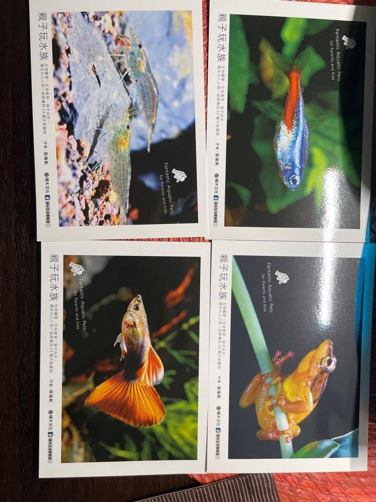 水族 明信片