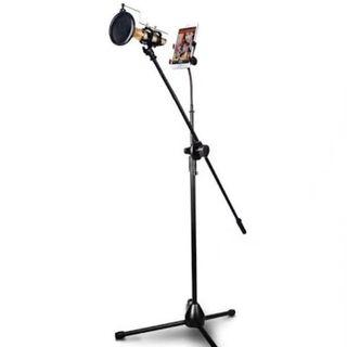 Microphone and phone stand