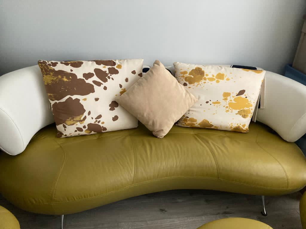 Genuine Leather Sofa and Pillows