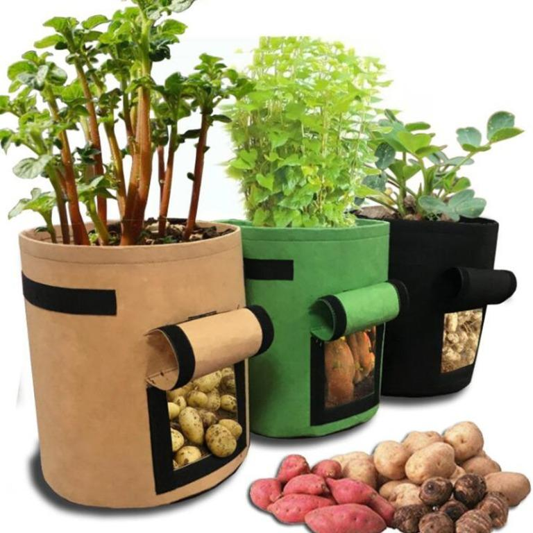 Azariaour plant grow bags(Limited Stocks)
