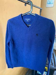 Express Men's VNeck Wool Pullover