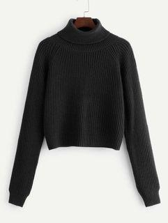 Shein Turtle Neck Knit Sweater