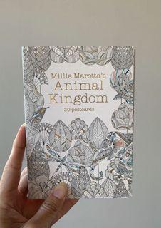 Millie Marotta's Animal Kingdom Colouring Postcards